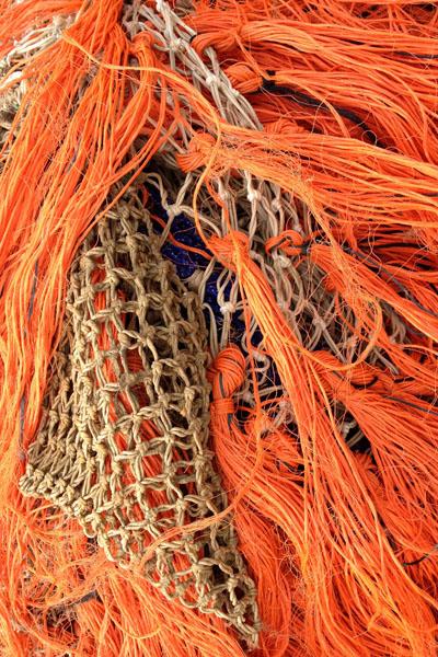 Texel Oudeschild © 2014 www.photo-coco.com
