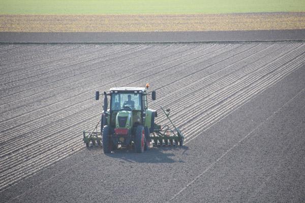 Texel Lente bij De Cocksdorp © 2014 www.photo-coco.com